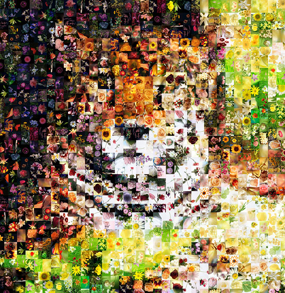 The Flower lion Photo mosaic